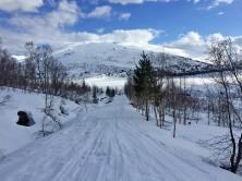 The road to Grøndalsstølen