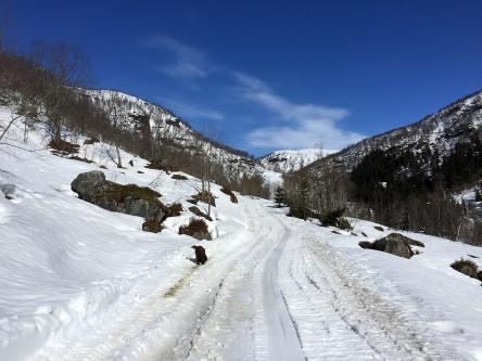 In Grindsdalen