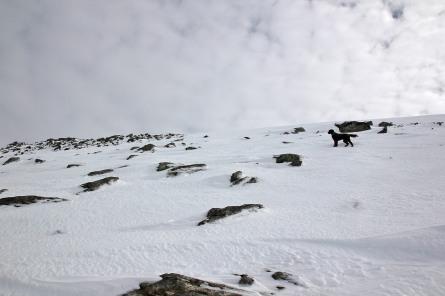 A steep hill