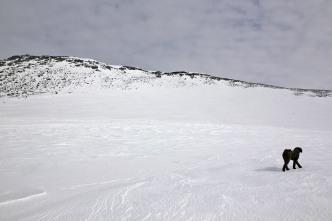 Kvanngrønakken up to the left
