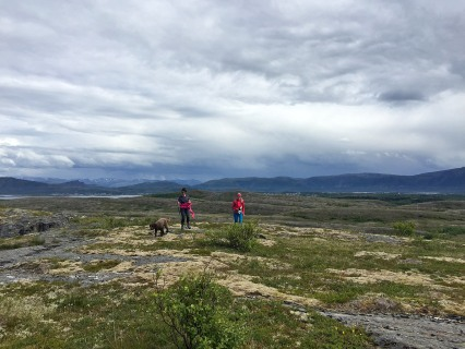 On the Hollendarheia high point