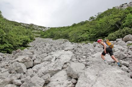 The long boulder field