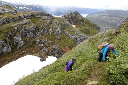 On the way to Landseterfjellet