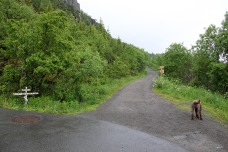 The gravel road to Dalen valley