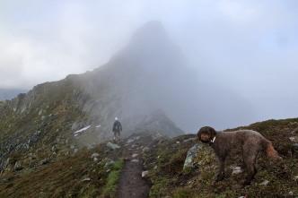 Leaving the ridge