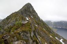 The ridge becomes more distinct