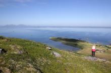 Still looking at Vega island