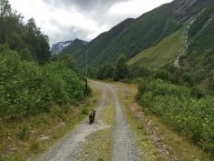 Looking for the Klokksegga path