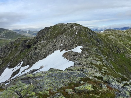 Highest point on Vardefjellet