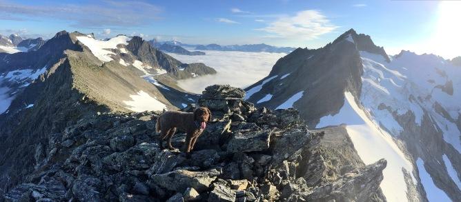 On top of Grøtdalstinden