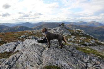 On top of Halvgjerda