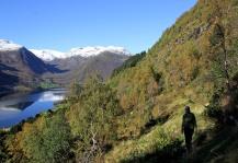 Towards Grøssete