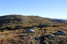 Moving on to Storfjellet