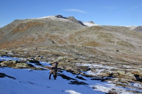 View towards Sandegga