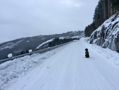 Finally on snow - and much better conditions