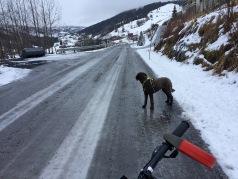 In Øvstedalen. So far, good conditions!