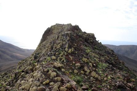 Ridge detail