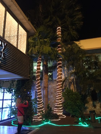 Xmas decorations (1)