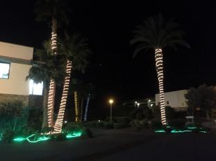 Xmas decorations (2)