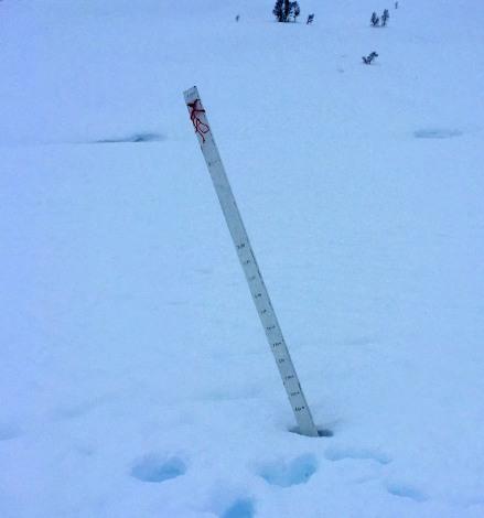 Enough snow...