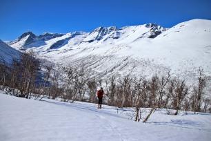 Finally - on skis - proper!