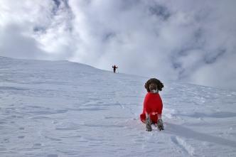 Descending Grønlifjellet