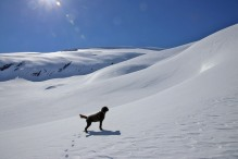 Karma - assessing the mountain