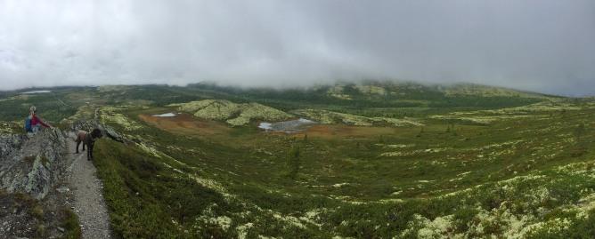 On the ridge to Svartfjellet (2/3)