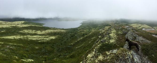 On the ridge to Svartfjellet (3/3)