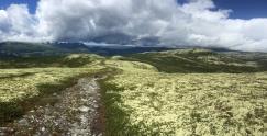 Descending Dynjefjellet