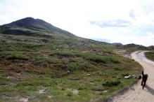 On the way to Søre Bølhøgda