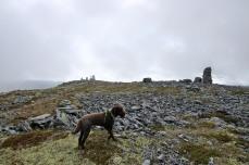 Dynjefjellet summit ahead