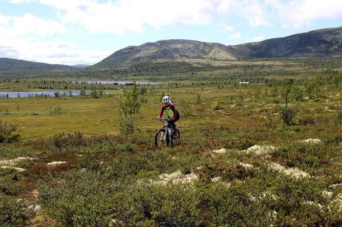Off-trail biking back to Spidsbergseter