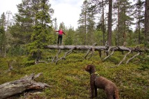 Anne, practicing balance training