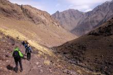Fine trail