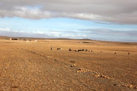 Rough landscape...