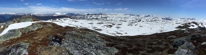 Iphone panorama (1/2)
