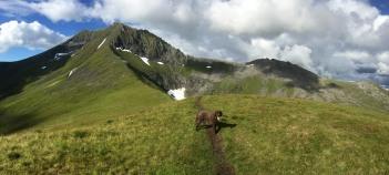 On the ridge to Saudehornet