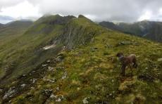On the ridge to Hyningane
