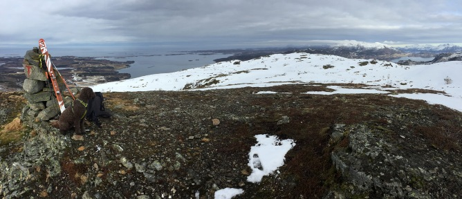 Lyngstadfjellet view (1/3)