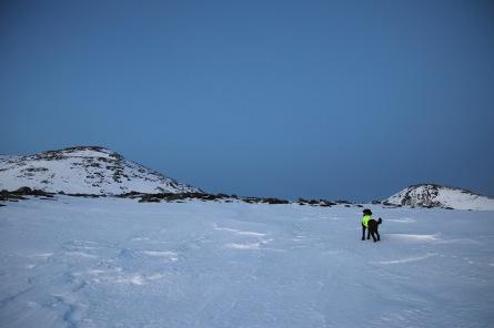 Which peak? Haddalshornet or Blåtind