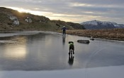 Karma chasing treats on ice