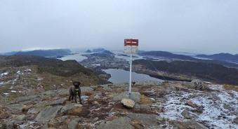 On Geitnausa (Spjelkavikfjellet)
