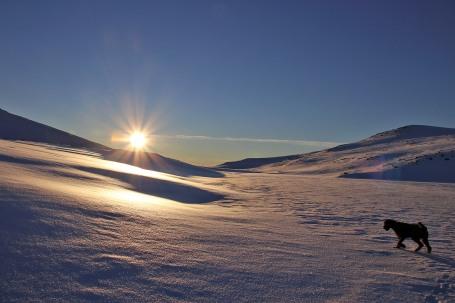 On lake Holmavatnet