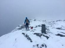 On the summit ridge