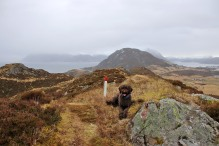 On Hellandsfjella
