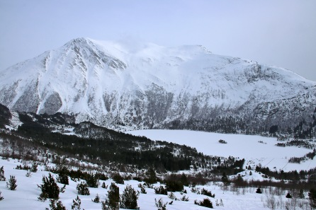 Snøhornet (1309m)