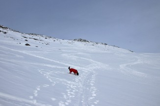 Approaching the steep part