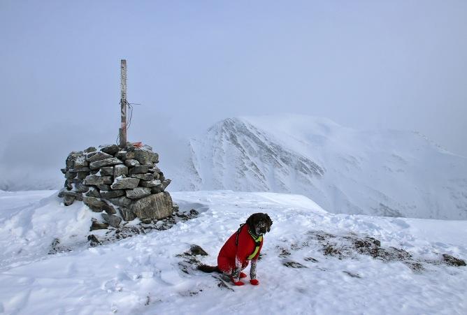 On top of Koppefjellet