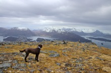 View towards the Ørsta peaks